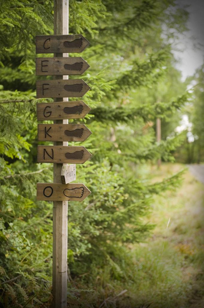 Fru Gran organique dans le Tiveden – B&B et hébergement de vacances