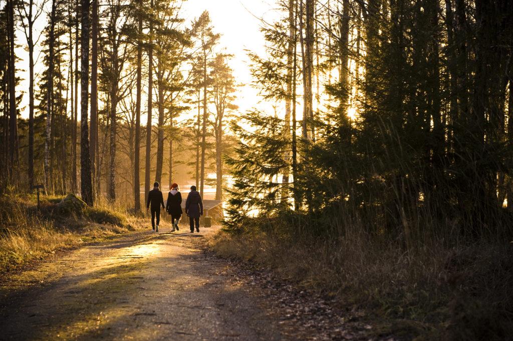 Oragánica Fru Gran en Tiveden – B&B y alojamiento de vacaciones