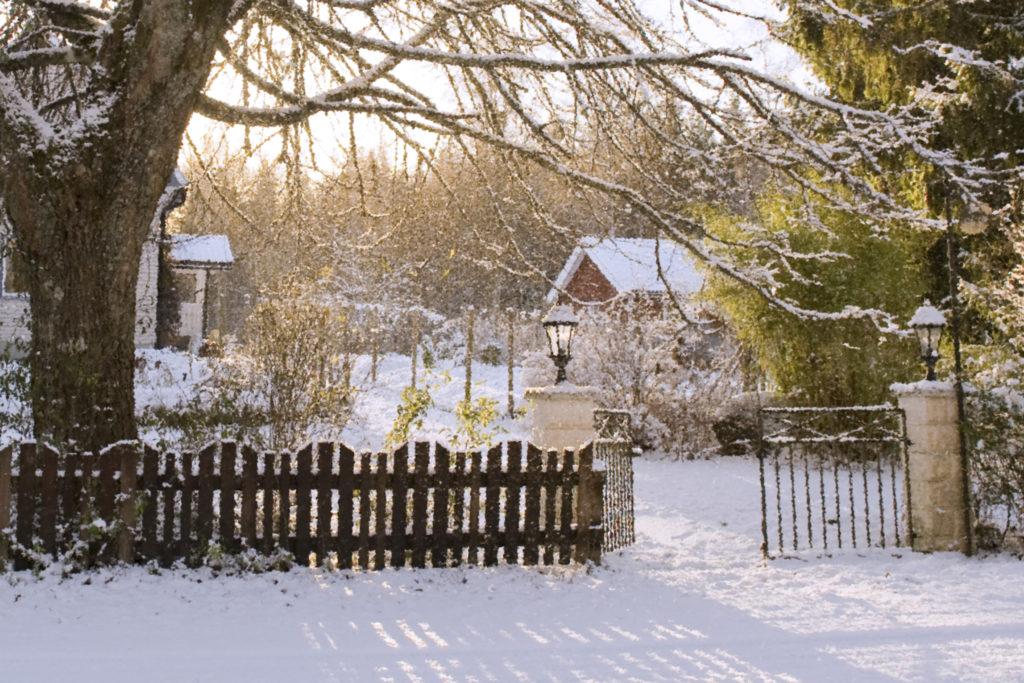 Organic Fru Gran in Tiveden - B&B and holiday accomodation